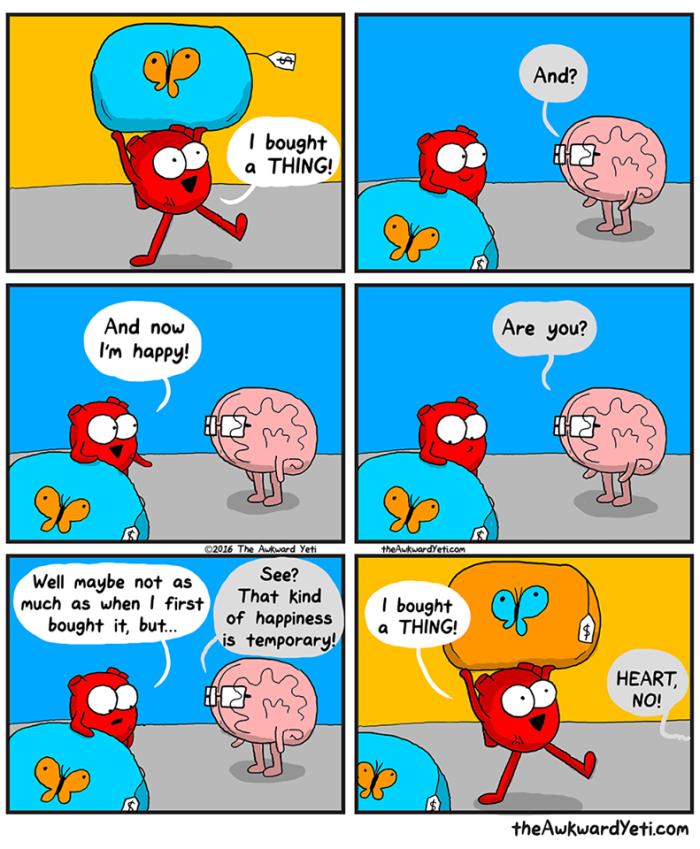 awkward yeti purchases